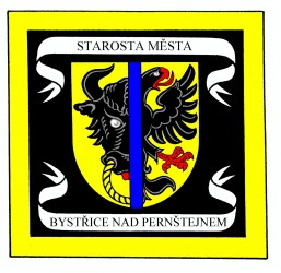 A draft of a mayoral standard for Bystřice nad Pernštejnem