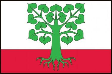 The flag of Klokočov