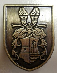 Die cast lapel pin with the motif of a personal heraldic achievement