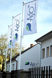 Outdoor corporate flags for the company ASIO