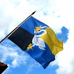 Town flag flying on an outdoor flagpole