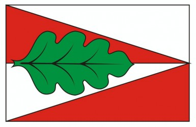 A draft of a flag for Panské Dubenky