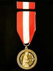 Custom-made firefighter award (HSZ JmK - Fire rescue service of the South Moravian Region)